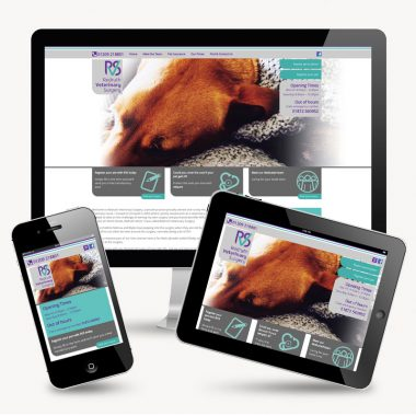 Redruth Vets Surgery new website